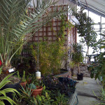 Colby Greenhouse