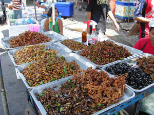 An insect food stall in Bahgkok, Thailand (image: Takoradee, CC BY-SA 3.0)